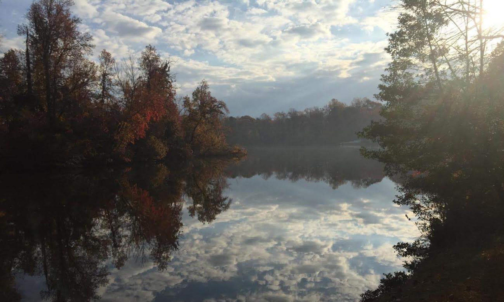 Hamilton Lakes and Parks